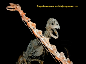 zz Rapetosaurus vs Majungasaurus 3